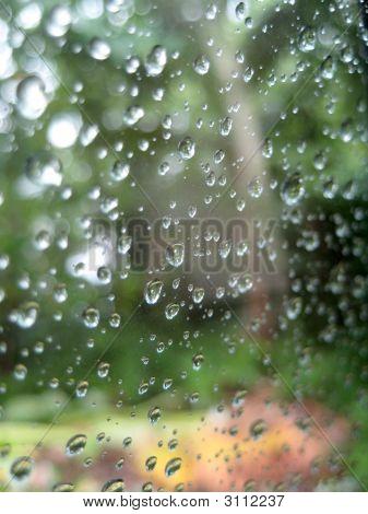 Rainy Outside