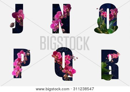 Flower Font Alphabet J, N, O, P,q,r Made Of Real Alive Flowers With Precious Paper Cut Shape Of Lett