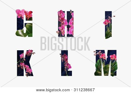 Flower Font Alphabet G,h,i,r,l,m Made Of Real Alive Flowers With Precious Paper Cut Shape Of Letter.
