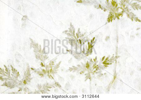 Greenery In Handmade Paper