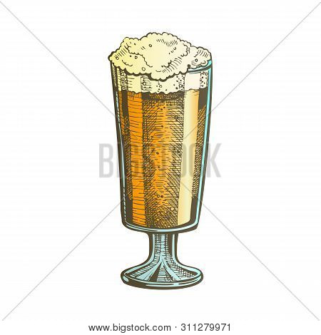 Hand Drawn Glass With Froth Bubble Beer Vector. Glass With Alcoholic Craft Frosty Light Lager Drink