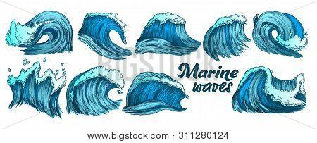Designed Sketch Splash Marine Wave Set Vector. Collection Of Different Enormous Huge Breaking Ocean