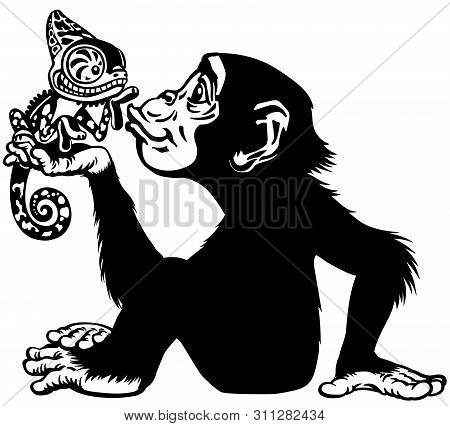 Cartoon Chimpanzee Holding A Chameleon. Great Ape Or Chimp Monkey In Sitting Pose Blowing A Kiss To