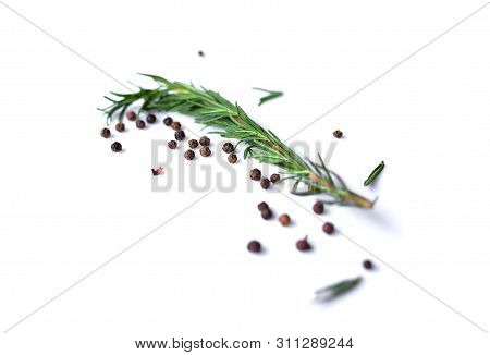 Pepperand Rosemary For Cooking Isolated On White Background