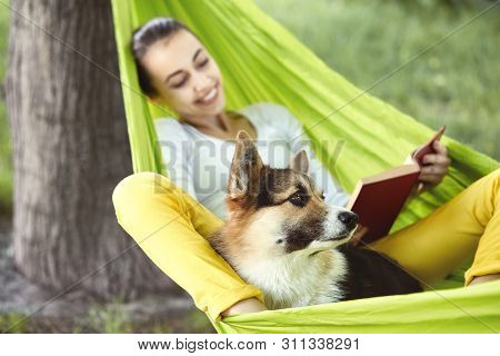 Smiling Young Woman In Green Hammock With Funny Dog Welsh Corgi In A Park Outdoors. Beautiful Happy