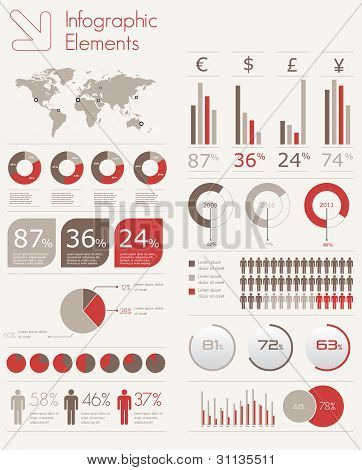 Detail Infographic Vector Illustration