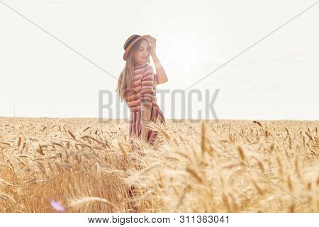 Back View Of Beautiful Young Woman In Srylish Striped Dress, Being In Wheat Field, Posing Among Spik