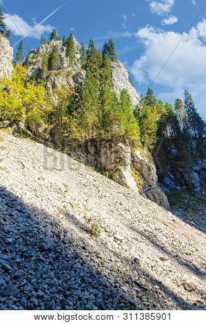 Trees On Steep Rocky Slope. Beautiful Nature Scenery On A Sunny Day. Canyon Of Cetatile Ponorului Ca
