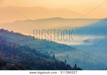 Beautiful Autumn Dawn In Mountains. Hazy Atmosphere And Fog In The Valley. Trees In Fall Foliage. Wo