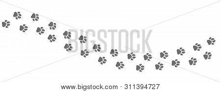 Footpath Trail Of Animal. Dog Or Cat Paws Print Vector Isolated On White Background. Trail Footpath