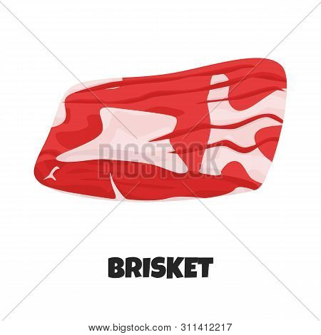 Vector Realistic Illustration Of Beef Brisket. Isolated Steak And Tenderloin Or Sirloin Fillet On Wh
