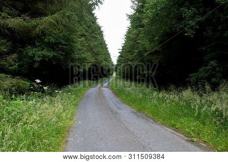 Quiet Country Road On An Overcast Day