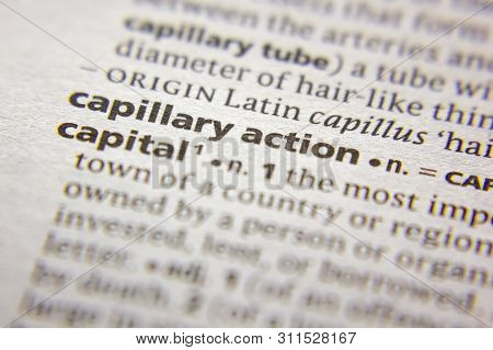 Word Or Phrase Capillary Action In A Dictionary
