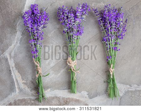 Bouquets Of Lavender On A Concrete Background. Medicinal Plants. Aromatherapy. Summer Mood.