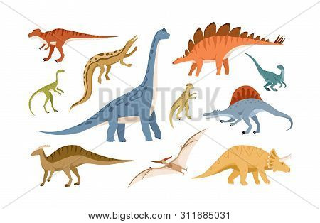 Collection Of Dinosaurs And Pterosaurs Of Various Types Isolated On White Background. Bundle Of Preh