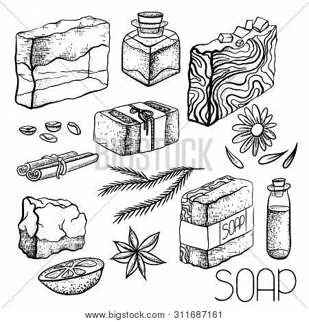 Set Of Hand Drawn Handmade Soaps And Ingredients For Soap Making. Hand Soap, Cinnamon, Coffee, Oil,