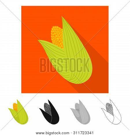 Vector Illustration Of Cob And Corn Icon. Collection Of Cob And Sweetcorn Vector Icon For Stock.