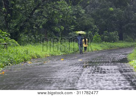Romantic Couple With One Umbrella Walking And Faded Away In Nature, Conceptual Stock Image Of Rainy
