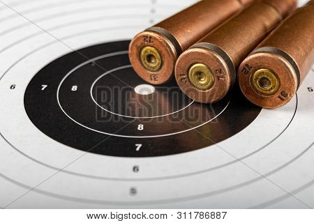 Ammunition Rifle Ammunition Lying On The Shield. Cartridges For A Military Rifle.