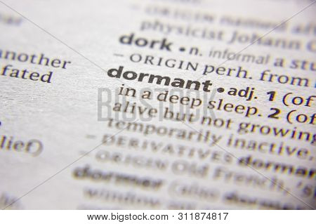 Word Or Phrase Dormant In A Dictionary