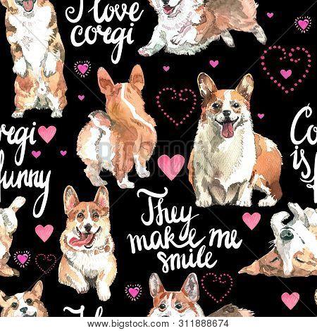 Welsh Corgi Pembroke, Watercolor, Dog, Animal, Pattern, Backgrounds