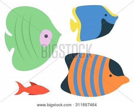 Sea Or Ocean Fish Species, Isolated Colorful Aquarium Habitats. Vector Striped Orange, Blue And Gree