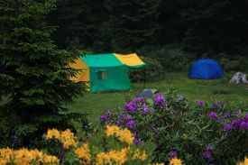Camping At Trabzon In Blacksea Region Of Turkey.