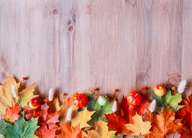 Fall background. Maple varicolored fall leaves on the wooden background with free space for text, fall frame background, fall background with fall maple leaves on the wooden surface