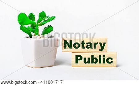 On A Light Background, A Plant In A Pot And Two Wooden Blocks With The Text Notary Public