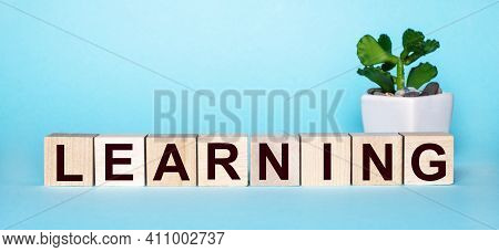 The Word Learning Is Written On Wooden Cubes Near A Flower In A Pot On A Light Blue Background