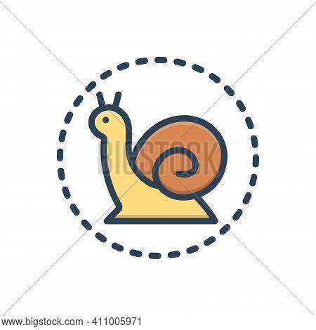 Color Illustration Icon For Slowly Animal Move-slow Snail Scrimshaw Conch Concha Gastropod Marine Aq