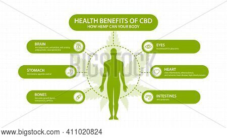Hemp Cbd Benefits For Your Body, White Poster With Inphographic And Silhouette Of Human Body. Health