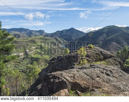 Green Hills And Forest Mountains, Landscape Of Tamadaba Natural Park. Gran Canaria, Canary Islands,