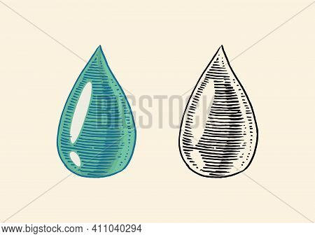 Dripping Drop Of Olive Oil. Blob Or Dribble Or Spot. Organic Vegetarian Product. Engraved Hand Drawn