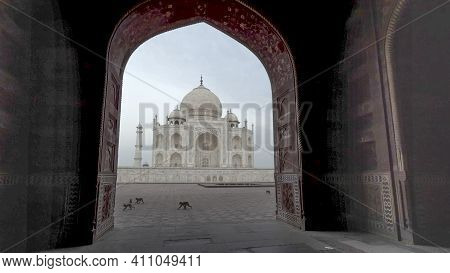 Agra, India - March, 26, 2019: Early Morning View Of The Taj Mahal Framed By An Arch With Monkeys Wa
