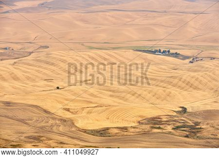 Rolling Hills In The Palouse. Agricultural Land On Rolling Hills In The Palouse Seen From Steptoe Bu