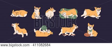 Set Of Cute Little Corgis Playing, Lying, Sleeping And Running. Funny Active Dog Or Puppy. Front, Ba