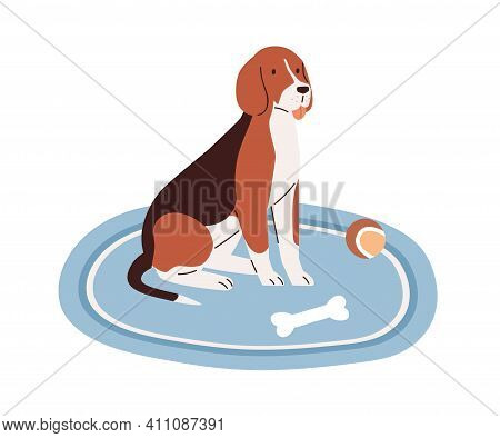 Cute Dog Sitting On Carpet At Home With Puppys Toys, Ball And Bone. Adorable Pet On Rug Isolated On