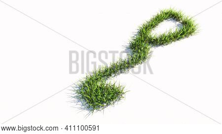Concept or conceptual green summer lawn grass symbol shape isolated on white background, sign of checkup stethoscope. A 3d illustration metaphor for a checkup, treatment, medicine, health and care