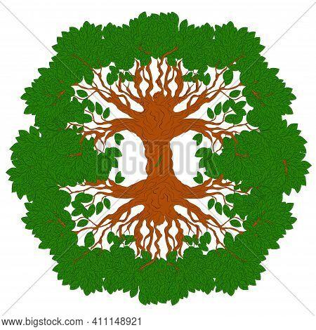 Yggdrasil Tree. Celtic Symbol Of The Ancient Vikings. The Symbol Of The Ancient Peoples Of Northern
