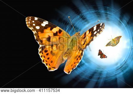 Three Butterflies Flew Into The Tunnel. Bright Light At The End Of A Dark Tunnel With Copy Space For