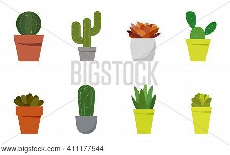 Houseplants Collection. Succulents And Houseplants. Illustration In Flat Style