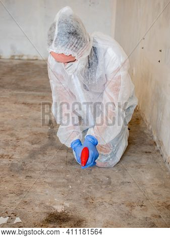 Removing Mold From The Floor In The Room. Elimination Of Mold At Home.
