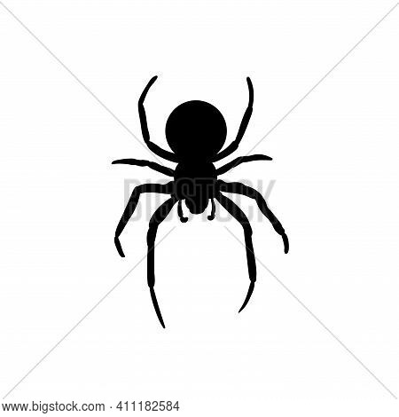 Spider Black Widow. Black Bug Spider Silhouette, Isolated White Background. Scary Halloween Icon, Sy