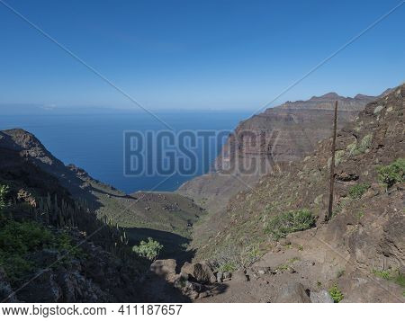 View Of Arid Subtropical Landscape Of Barranco De Guigui Grande Ravine With Cacti And Palm Trees Vie