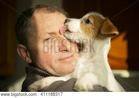Dog Jack Russell Terrier Kisses And Licks The Owner. Animal Love Concept. The Man And The Dog Are Ha