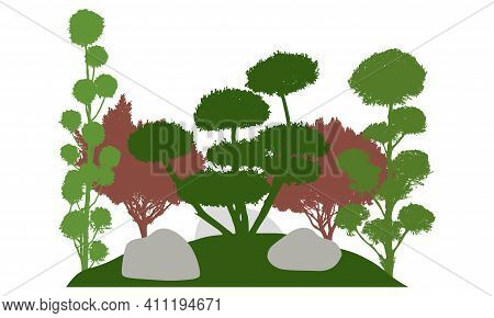 Silhouette Of  Garden With Decorative Trees. Beautiful Bonsai, Cypress And Other Coniferous Trees. V