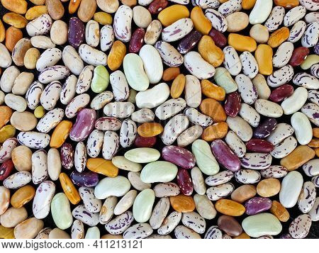 High Angle Shot Of Heap Of Colorful Kidney Beans, Heap Of Colorful Raw Kidney Beans (legumes)