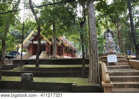 Wat U Mong Or Wat Umong Suan Puthatham Temple For Thai People And Foreign Travelers Travel Visit And