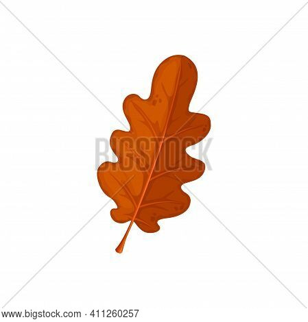 Autumn Oak Leaf, Oak Tree Fall Dry Leaves, Isolated Vector Icon. Dry Red Brown Oak Leaf, Forest Tree